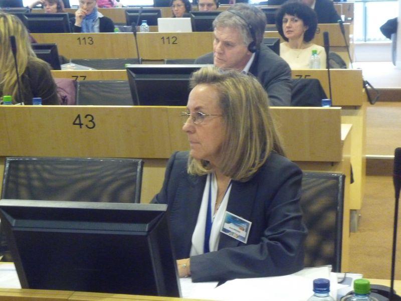 EESC rapporteur Dr Anna Bredima