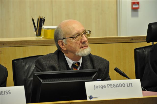 J. Pegado Liz, Rapporteur and Chairman of the SMO