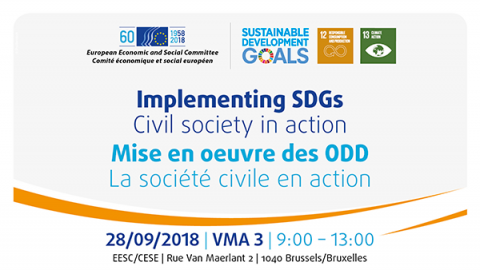 Implementing Sdgs Civil Society In Action European Economic And