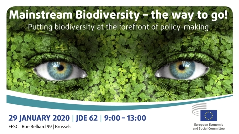 Mainstream Biodiversity – the way to go!