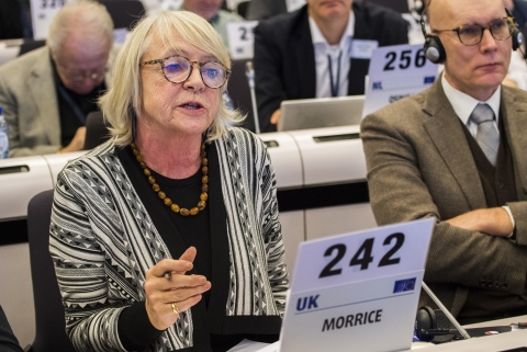 Jane Morrice at a EESC plenary session