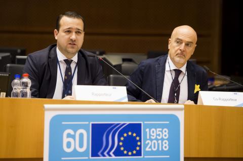 Mihai Ivaşcu and Stefano Palmieri