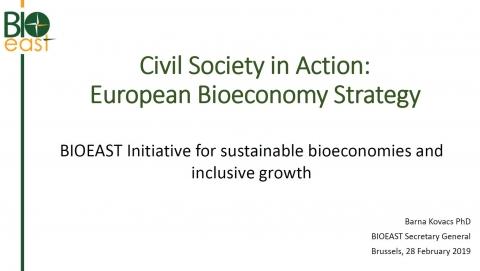 Civil Society in Action: European Bioeconomy Strategy