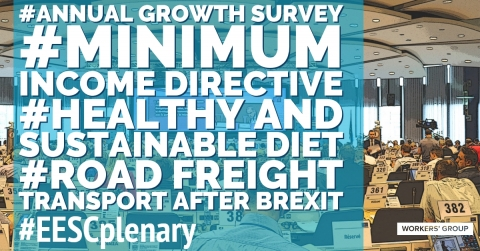 Newsletter Cover Page with Opinion on Minimum Income, Healthy Diet, Annual Growth Survey, and Road Freight Transport