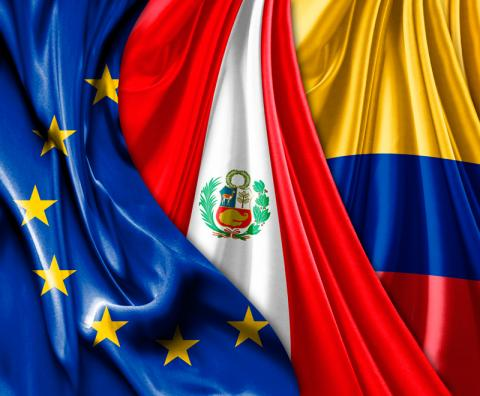 The Eu Colombiaperuecuador Domestic Advisory Group European
