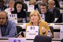EESC rapporteur Anne Demelenne