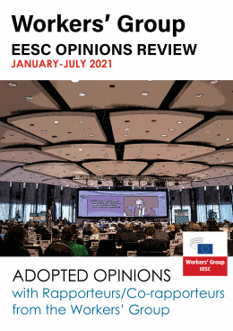 January to June 2021: Summary of Adopted Opinions