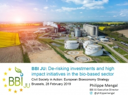 De-risking investments and high impact initiatives in the bio-based sector