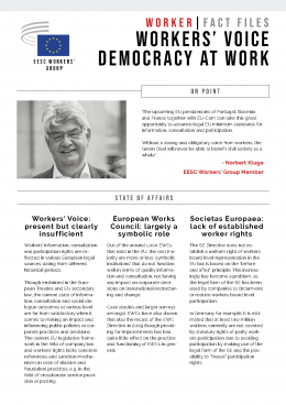 Democracy at work - factfile
