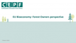 EU Bioeconomy - Forest Owners Perspective