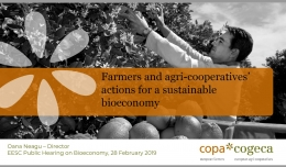 Farmers' and agri-cooperatives actions for a sustainable bioeconomy
