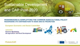 Florence Buchholzer - Modernising & Simplifying the Common Agricutural Policy _ Maximising its contribution to SDGs and EU priorities - DG AGRI