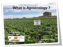 Georges Felix - What is agroecology - Cultivate!