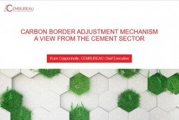 A View from the Cement Sector
