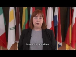 Embedded thumbnail for ECI DAY 2019 - Isabel Caño, EESC Vice-President